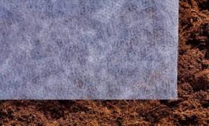 Для того, щоб захистити ґрунт від бактерій з конденсату, накрийте грядку лутрасилом.