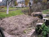Кращі натуральні добрива для саду та городу