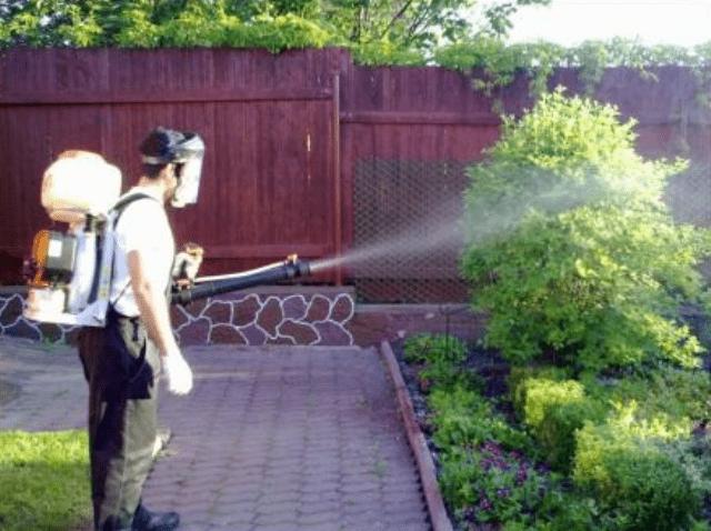 Мідний купорос, застосування в садівництві