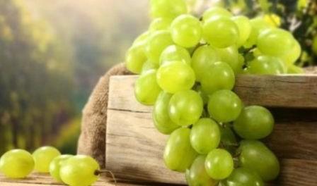 Як зберігати виноград на зиму в домашніх умовах
