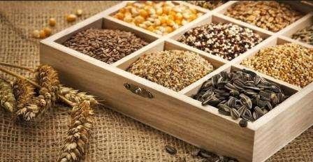Зберігання насіння, як зберігати насіння правильно