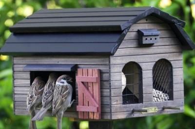 Годівниця для птахів своїми руками, фото кормушок