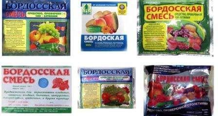 yak-prugotyvatu-bordosky-symish-2