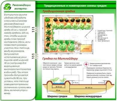 metod-vyroshhyvannya-ovochiv-po-mitlajderu-1