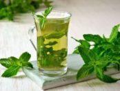 М'ята - лікувальні властивості та користь для здоров'я