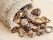 Як правильно сушити гриби в домашніх умовах на зиму