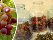 Смачний компот з винограду на зиму