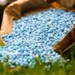 Які добрива вносити в ґрунт навесні