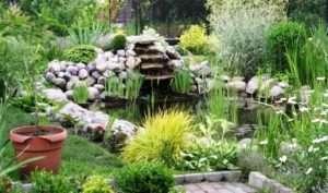 Як зробити декоративний ставок садовий