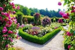 Клумби і квітники своїми руками фото ідеї