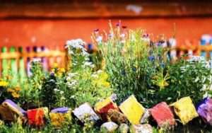 Клумби і квітники своїми руками фото