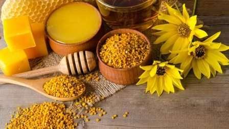 Бджолиний пилок лікувальні властивості та протипоказання: Як приймати дітям