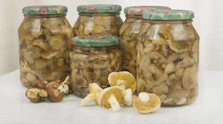 Мариновані маслюки на зиму