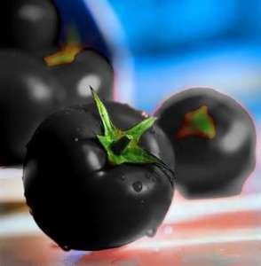 Сорт «Чорна Лакомка» вирощується у відкритому грунті