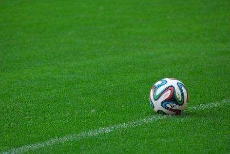 Фото: Спортивний газон