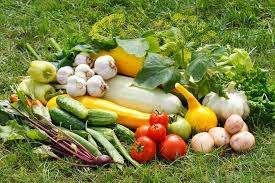 Місячний посівний календар на вересень 2018 року для садівника і огородника - таблиця