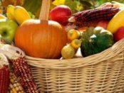Місячний календар на вересень - перелік робіт на ділянці, в допомогу садівникові й городникові