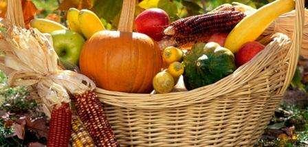 Місячний посівний календар на вересень 2018 року для садовода і городника: Городні роботи у вересні за календарем посівів