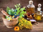Ефективні народні засоби боротьби з шкідниками в саду та на городі