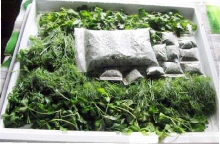 Традиційна заморозка кропу - в пакеті